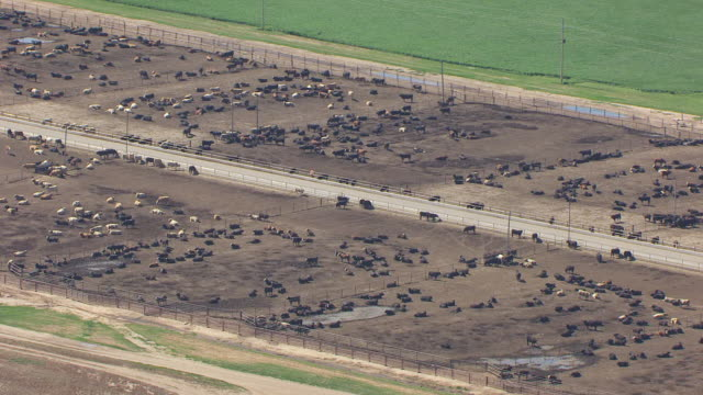 WS AERIAL DS View of cattle pens at Pratt Army Airfield / Kansas, United States