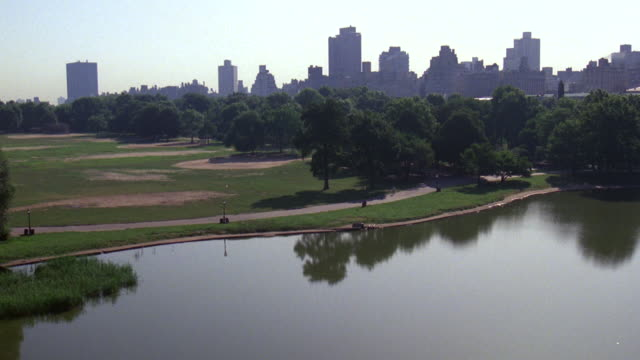 ms view of central park - anno 1983 video stock e b–roll