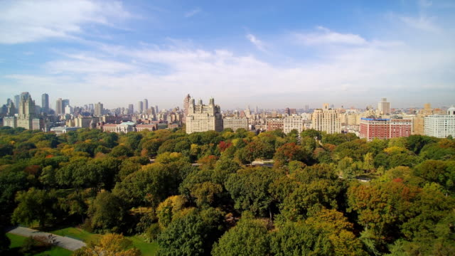 WS AERIAL POV View of Central Park with city in background / Manhattan, New York City, New York State, United States