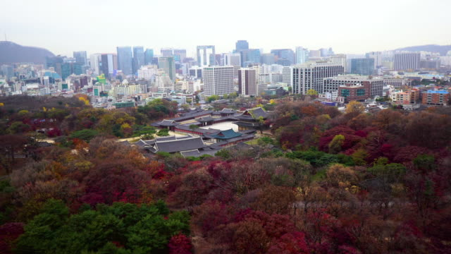 View of Changdeok Palace (UNESCO World Heritage Site in Seoul) and cityscape in autumn season at day