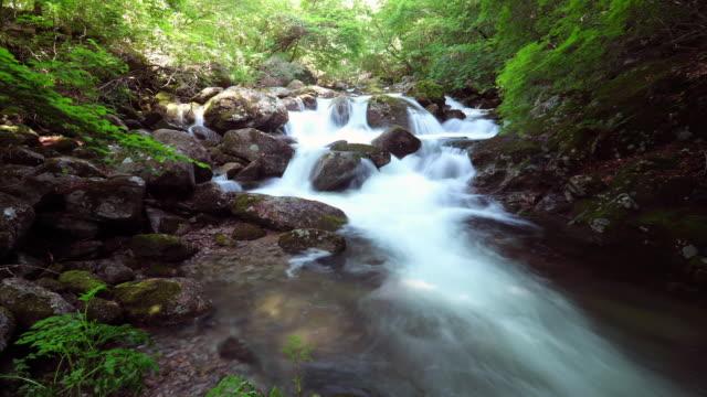vídeos de stock, filmes e b-roll de view of cheondong valley in sobaeksan mountain - ponto de referência natural