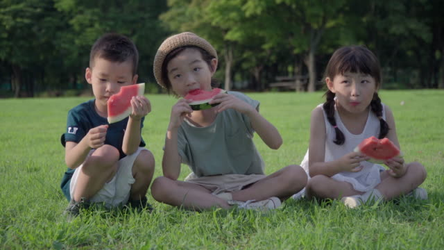 view of children eating watermelon on the lawn in summer at seoulforest (the third largest park in seoul city) - woolly hat stock videos and b-roll footage