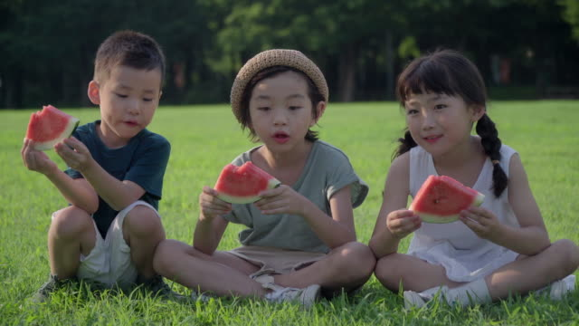View of children eating watermelon on the lawn in summer at Seoulforest (the third largest park in Seoul city)