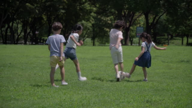 view of children playing soccer on the lawn in summer at seoulforest (the third largest park in seoul city) - korean ethnicity stock videos & royalty-free footage