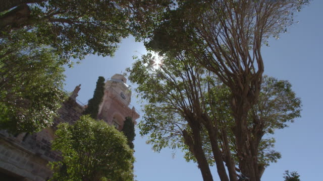 MS DS View of church steeple through trees / Real de Catorce, San Luis Potosi, Mexico