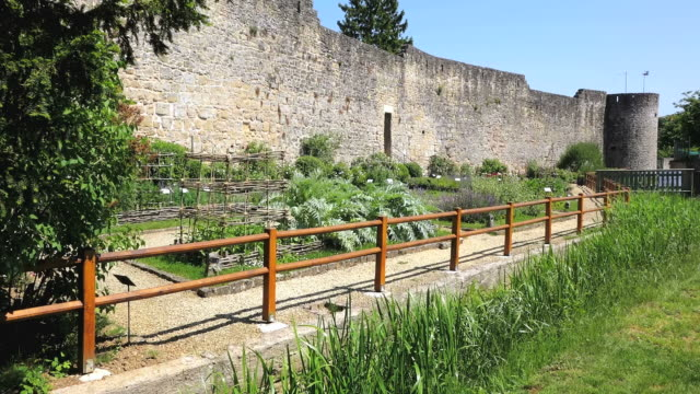 ws view of citadelle surrounding small trees / rodemack, lorraine, france - lorraine stock videos & royalty-free footage