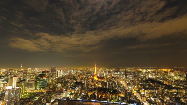 ws t/l view of city at night / tokyo, japan - sony stock videos & royalty-free footage