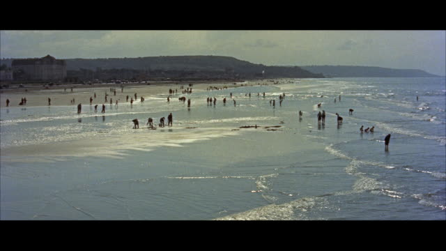 ws view of clam diggers at beach / deauvile, france - 1957年点の映像素材/bロール