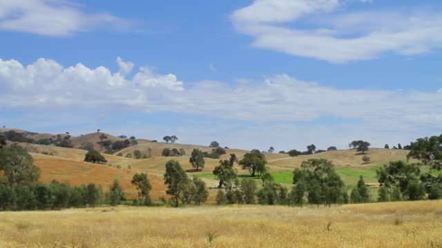 WS View of classic rural area in outback / Bendigo, Victoria, Australia