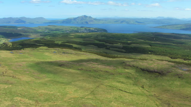WS AERIAL TU View of clear cut conifer forest plantation moving on to hill top with distant Tobermory and sea / Isle or island of Mull, Argyll and Bute, Scotland