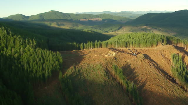 WS AERIAL View of clear cutting forest areas in front of forested hills / Washington, United States