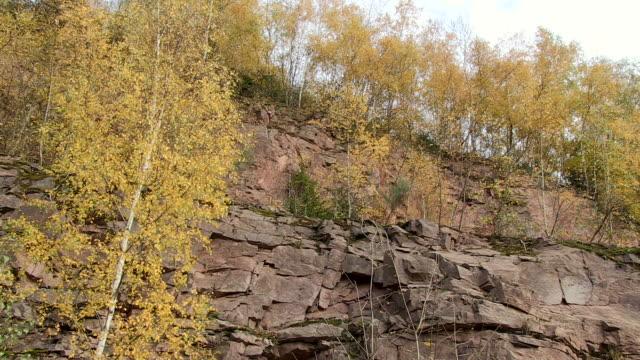 ms pan view of cliff / saarburg, rhineland-palatinate, germany - saarburg stock-videos und b-roll-filmmaterial