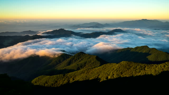 view of cloud sea at odosan mountain (the mountain has the largest natural woods of korea) - pyeongchang stock videos and b-roll footage
