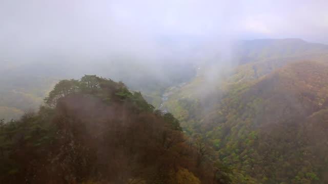 ws t/l view of cloud sea in mt. baegamsan in naejangsan natioal mountain park / jangseonggun, jeollanam-do, south korea - jeollanam do stock videos & royalty-free footage