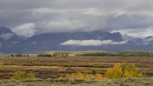 ws t/l view of clouds and shadows moving across land scape, jenny lake and mountains at grand teton national park / jackson hole, wyoming, united states - grand teton national park stock videos & royalty-free footage
