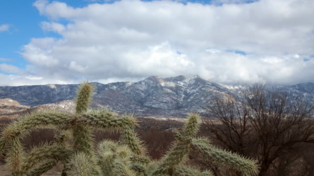 WS T/L View of clouds and shadows moving over desert landscape of mountains and cactus plants / Tucson, Arizona, United States