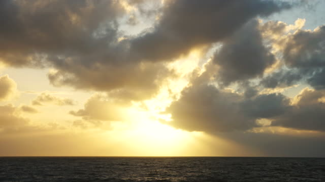 ws t/l view of clouds drifting over ocean at sunrise / sydney, australia - dramatic sky stock videos & royalty-free footage