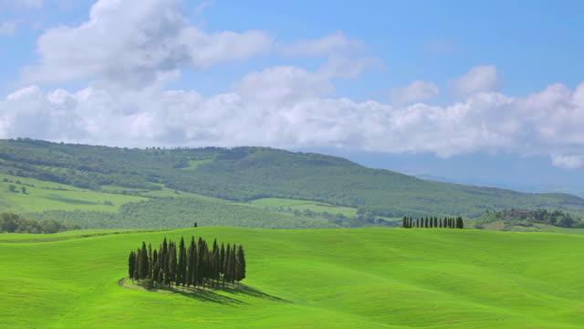 ws t/l view of clouds moving over cypress grove near san quirico d`orcia / tuscany, italy - kulle bildbanksvideor och videomaterial från bakom kulisserna