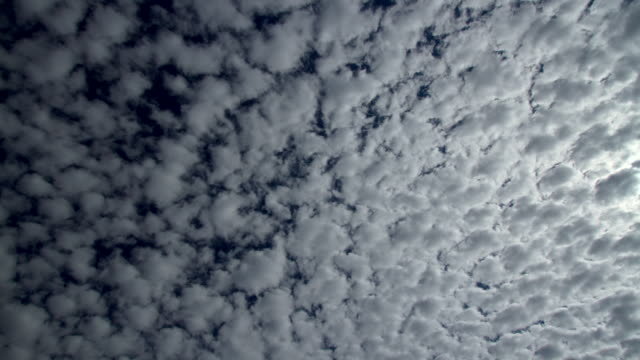 ws t/l view of clouds passing by moon at night  / tucson, arizona, united states - altocumulus stock videos and b-roll footage
