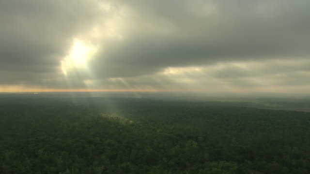 vidéos et rushes de ws aerial view of cloudy sky over forest with ray of light / houma, louisiana, united states - grandiose