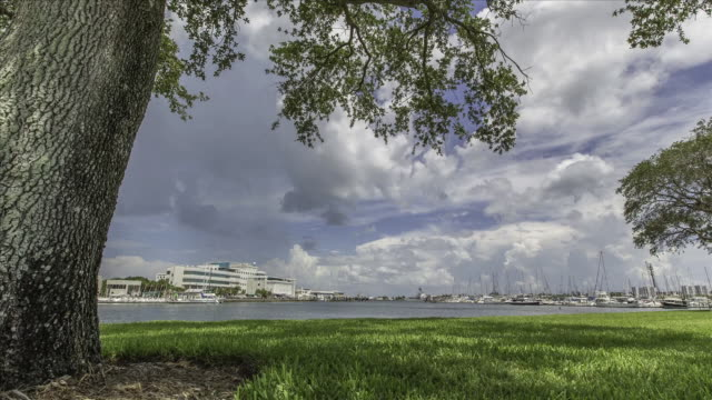view of coastline near gulf of mexico - gulf of mexico stock videos and b-roll footage