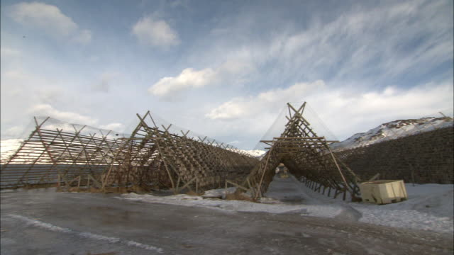 vidéos et rushes de view of cods being dried on drying racks in lofoten, norway - sécher activité