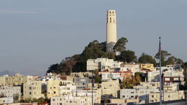 ms view of coit tower with surrounding buildings in early morning light / san francisco, california - coit tower stock videos & royalty-free footage