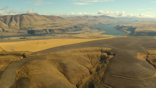 WS AERIAL View of Columbia River Gorge with wheat fields / Oregon, United States