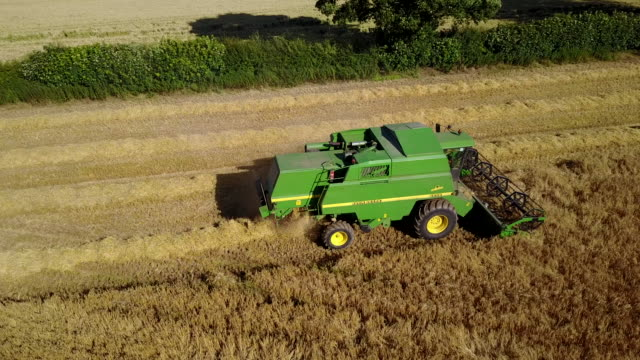 view of combine harvester at ault hucknall, glapwell, chesterfield, derbyshire, england, united kingdom, europe - agricultural machinery stock videos & royalty-free footage