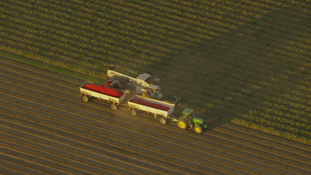 ws pan aerial pov view of combine harvester harvesting crop from farm near san joaquin valley / helm, california, united states - harvesting点の映像素材/bロール