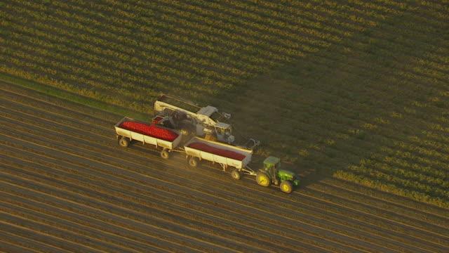 ws pan aerial pov view of combine harvester harvesting crop from farm near san joaquin valley / helm, california, united states - 収穫する点の映像素材/bロール