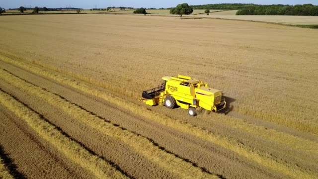 View of combine harvester near Teversal, Mansfield, Nottinghamshire, England, United Kingdom, Europe