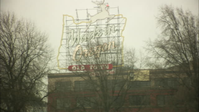 ws zi view of commercial sign on building and trees/ portland, oregon, usa - animal representation stock videos & royalty-free footage