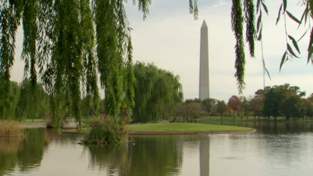 ws view of constitution gardens with ducks in pond and washington monument / washington, district of columbia, united states - washington monument stock videos & royalty-free footage