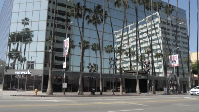 vidéos et rushes de view of contemporary architecture and palm trees on hollywood boulevard, hollywood, los angeles, california, united states of america, north america - hollywood boulevard