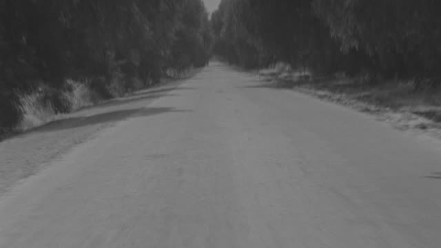 ms pov view of country road surrounded by tree and few traffic on road - film slate stock videos & royalty-free footage