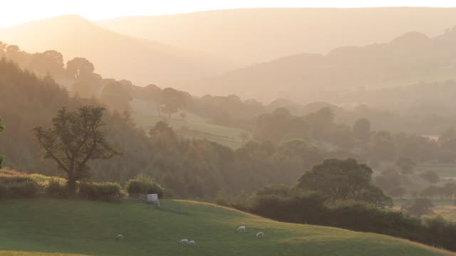view of countryside near hathersage at sunset, derbyshire, england, uk, europe - hill stock videos & royalty-free footage