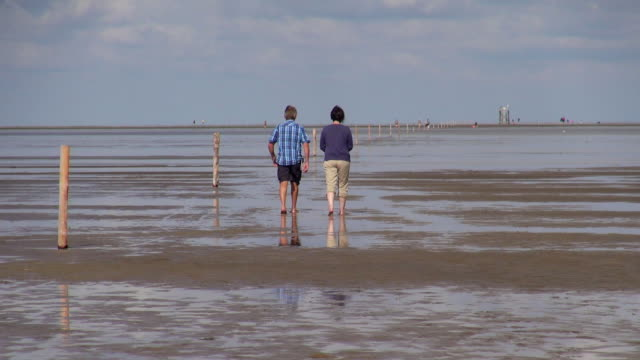 vídeos de stock, filmes e b-roll de ws view of couple walking on sea ebb tide at wadden sea, north sea north frisia / westerhever, schleswig holstein, germany - vazante