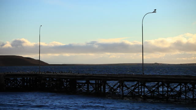 ws view of covered with birds on narrow bridge on lake with lamps at afternoon light / near porvenir, chilean patagonia, chile - travelling light stock videos & royalty-free footage