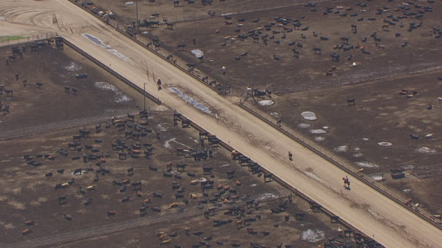 WS AERIAL TS ZO View of Cowboy on horse between feedlot to entire feedlot / Lexington, Nebraska, United States