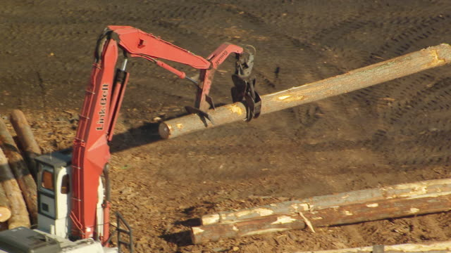 ms aerial zi ts view of crane lifts and moving single log in millyard / washington, united states - timber stock-videos und b-roll-filmmaterial