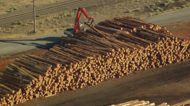 WS AERIAL View of crane moving one log in large stack at millyard / Washington, United States