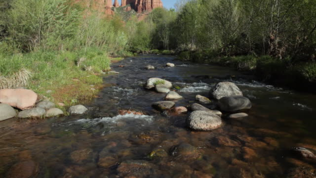 ws tu view of creek and cathedral rock / sedona, arizona, usa - sedona stock videos & royalty-free footage