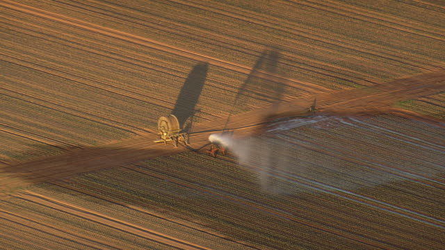 ws aerial zo view of crop spraying in farm field / germany - bewässerungsanlage stock-videos und b-roll-filmmaterial