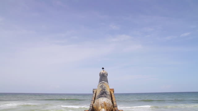 WS TD View of crow perches on an old canon pointed out to sea on Galle Face Green esplanade / Colombo, Western Province, Sri Lanka