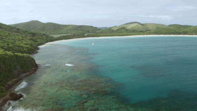vídeos de stock, filmes e b-roll de ws aerial pov view of culebra island coastline with coral reefs under clear water / culebra, puerto rico, united states - porto riquenho
