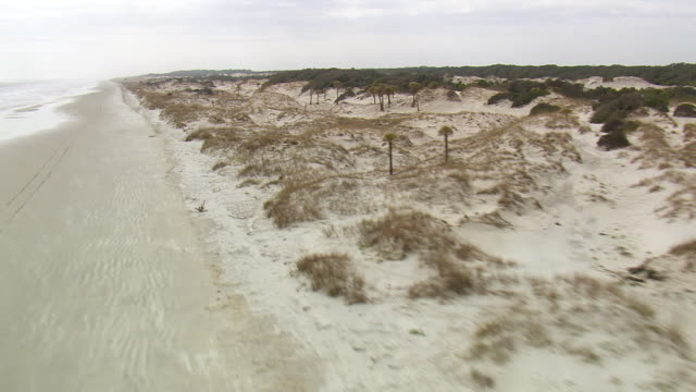ws aerial view of cumberland island national seashore / georgia, united states - ジョージア州点の映像素材/bロール