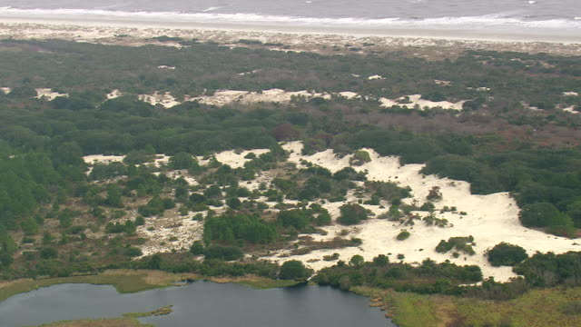 ws aerial view of cumberland island national seashore / georgia, united states - georgia country stock videos and b-roll footage