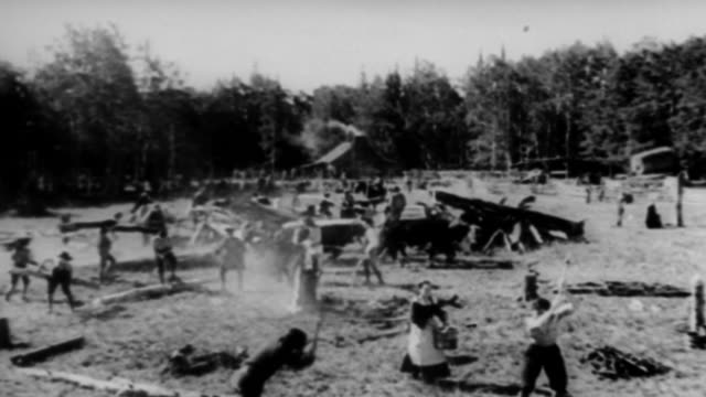 ws view of cutting trees and clearing  land / united states - 19th century stock videos & royalty-free footage