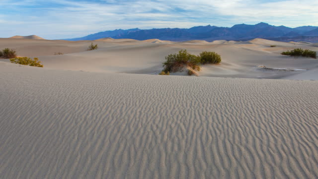 ws t/l pan view of death valley national park / death valley, california, united states - ruhige szene stock-videos und b-roll-filmmaterial
